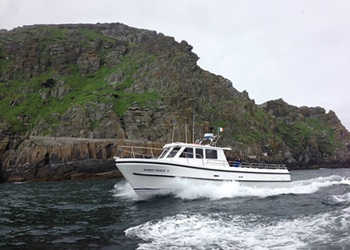 Cruise around Skellig Michael