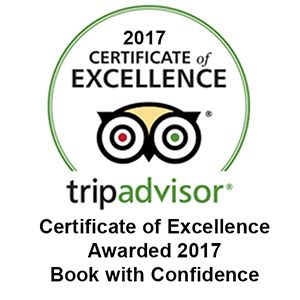 trip advisor certificate of excellence award